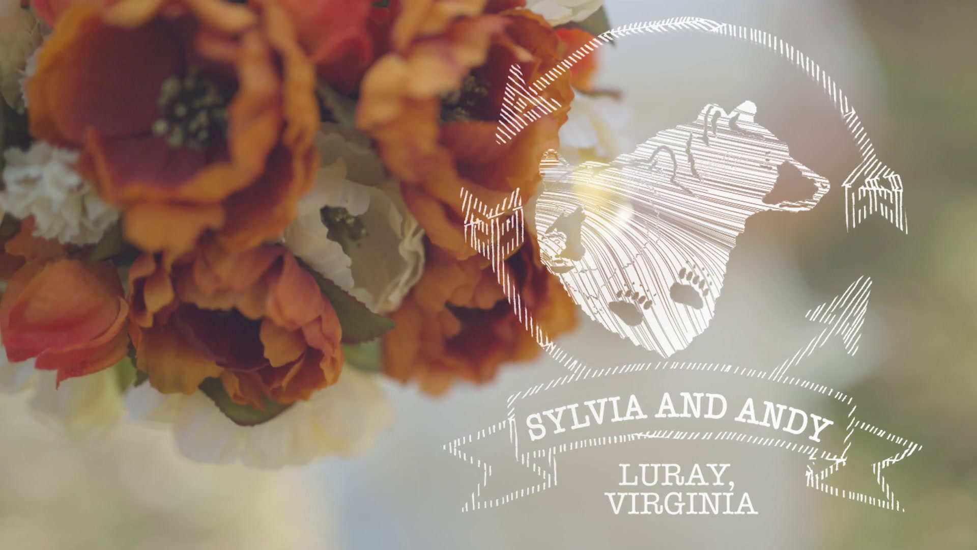 Andy + Sylvia | Luray, Virginia | Shenandoah Woods Pavilion