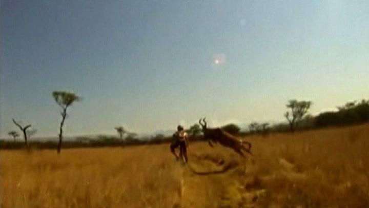 Syklist angrepet av en antilope