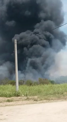 Por una acción irresponsable comenzó el incendio que complicó a los bomberos