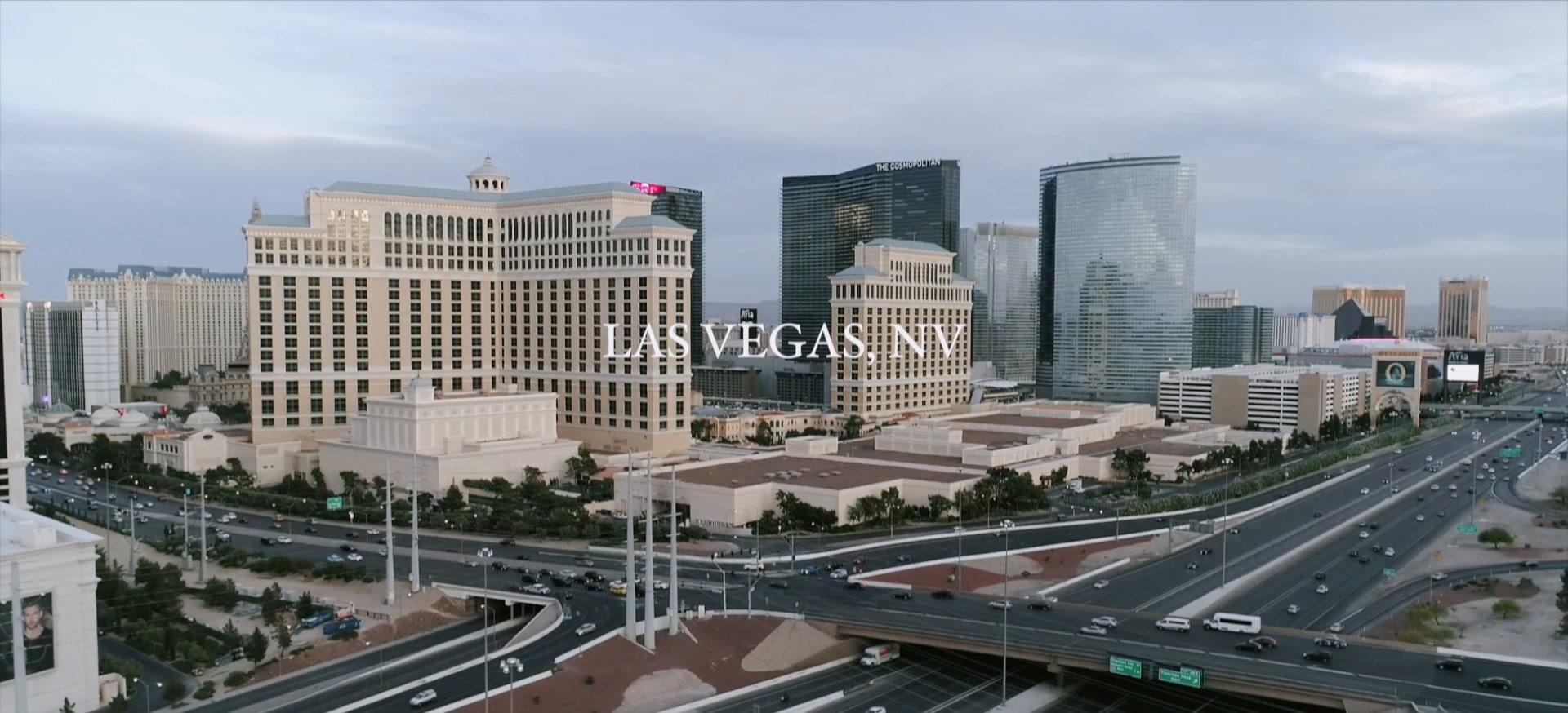 Derek + Fani | Las Vegas, Nevada | Bellagio Hotel