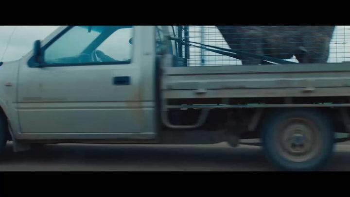 NZ Trailer
