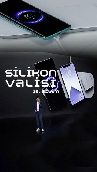 Silikon Valisi