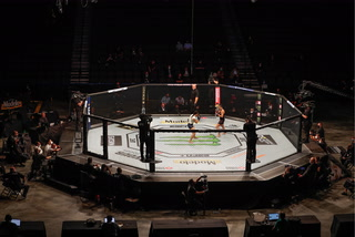 UFC and Top Rank Boxing Approved to Host Events in Las Vegas – Video