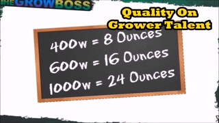 Marijuana Garden Rescue Nutrients Dont Matter Yield Is Based on Light And Your Rotation