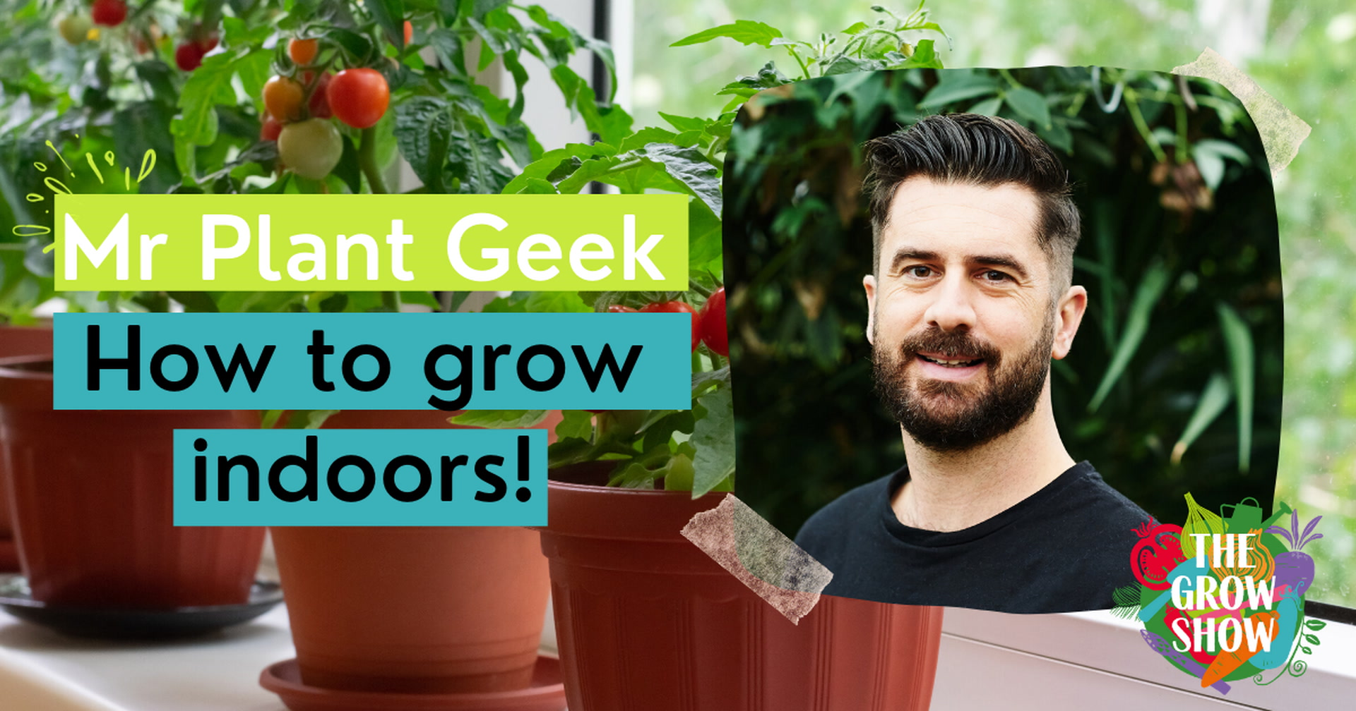 Mr Plant Geek: How to grow indoors