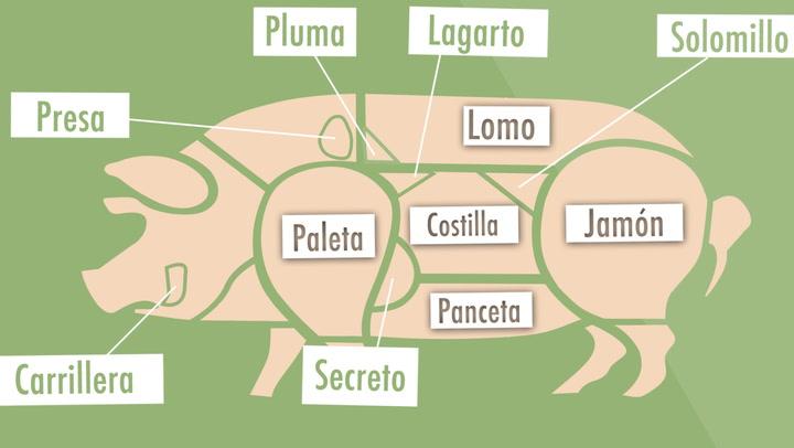 Guía práctica: partes del cerdo ibérico