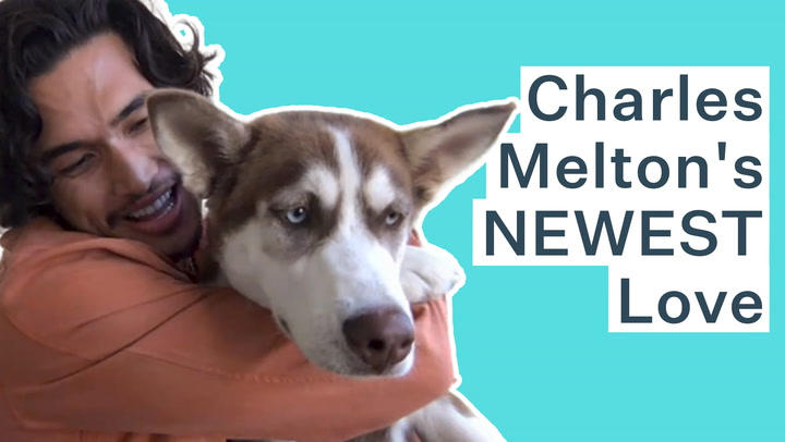 Riverdale's Charles Melton Is In Total Puppy Love With His Adopted Husky | Bustle