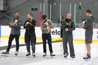 Abandoned Pomeranians  adopted through Golden Knights event