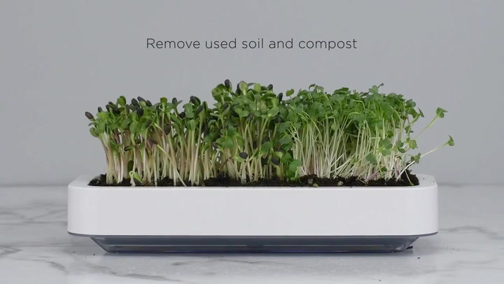 Preview image of Chef'n Microgreen Grower video