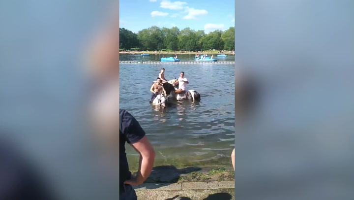 Woman confronts 'travellers' riding horses in London's Serpentine