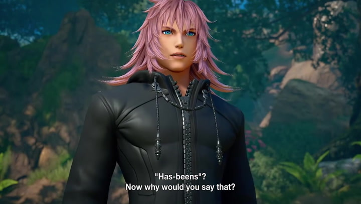 Kingdom Hearts Profile Marluxia