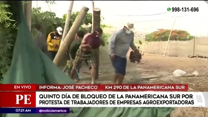 """Decenas de personas varadas en Ica ingresan a viñedo y recogen uvas para sobrevivir en el quinto día del paro agrario: """"El hambre nos obliga"""""""