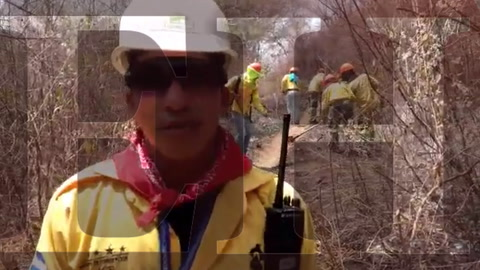 Bomberos realizan trabajos de enfriamiento en bosque quemado de El Hatillo