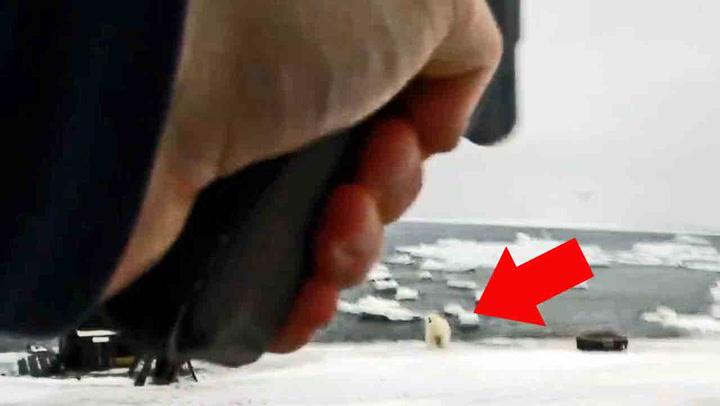 Her avfyrer Trond skremmeskudd mot nærgående isbjørn