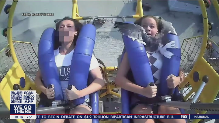 Teen smacked in face by seagull on amusement park ride