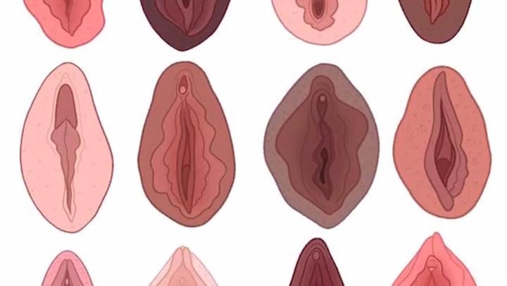 Types vagina 13 Different
