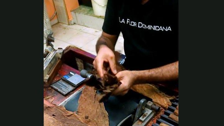 La Flor Dominicana Digger