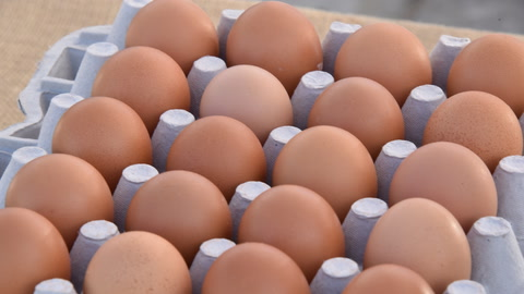 An Egg a Day Lowers  Heart Disease Risk?