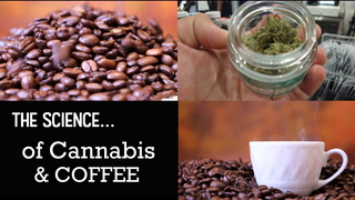 SCIENCE: Why CANNABIS and COFFEE go so well together!