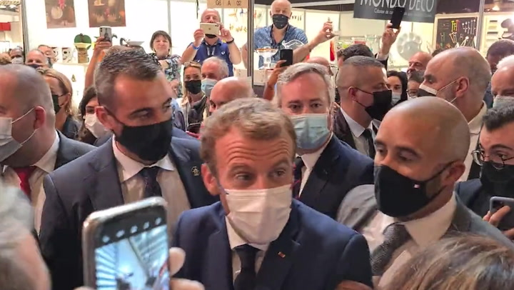 Culprit of Egg Thrown at French President Detained by Police