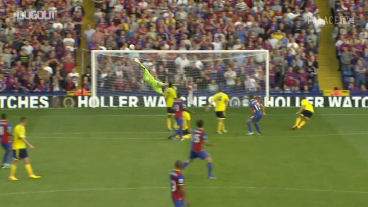 Crystal Palace's best goals 2013-14