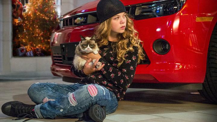 «Grumpy Cat» klar for filmen