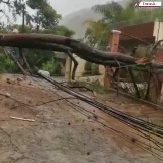 Empresa Energía Honduras reporta daños en tendido eléctrico en Valle de Ángeles