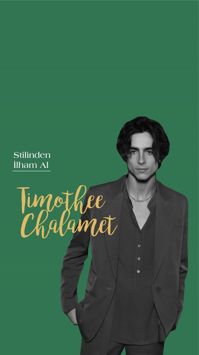 Stilinden İlham Al - Timothée Chalamet