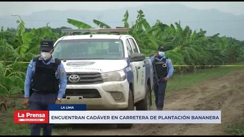 Encuentran cadáver en carretera de plantación bananera