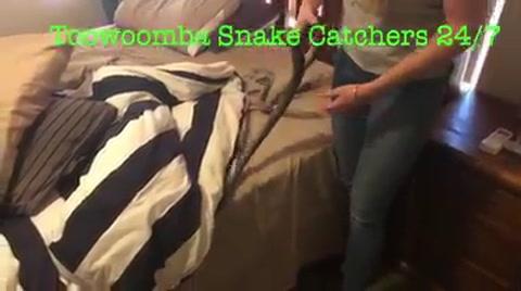 Mujer halla enorme serpiente en la cama de su hija