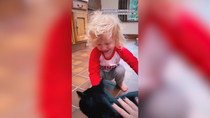 Stacey Solomon and son Rex share delight over new cat