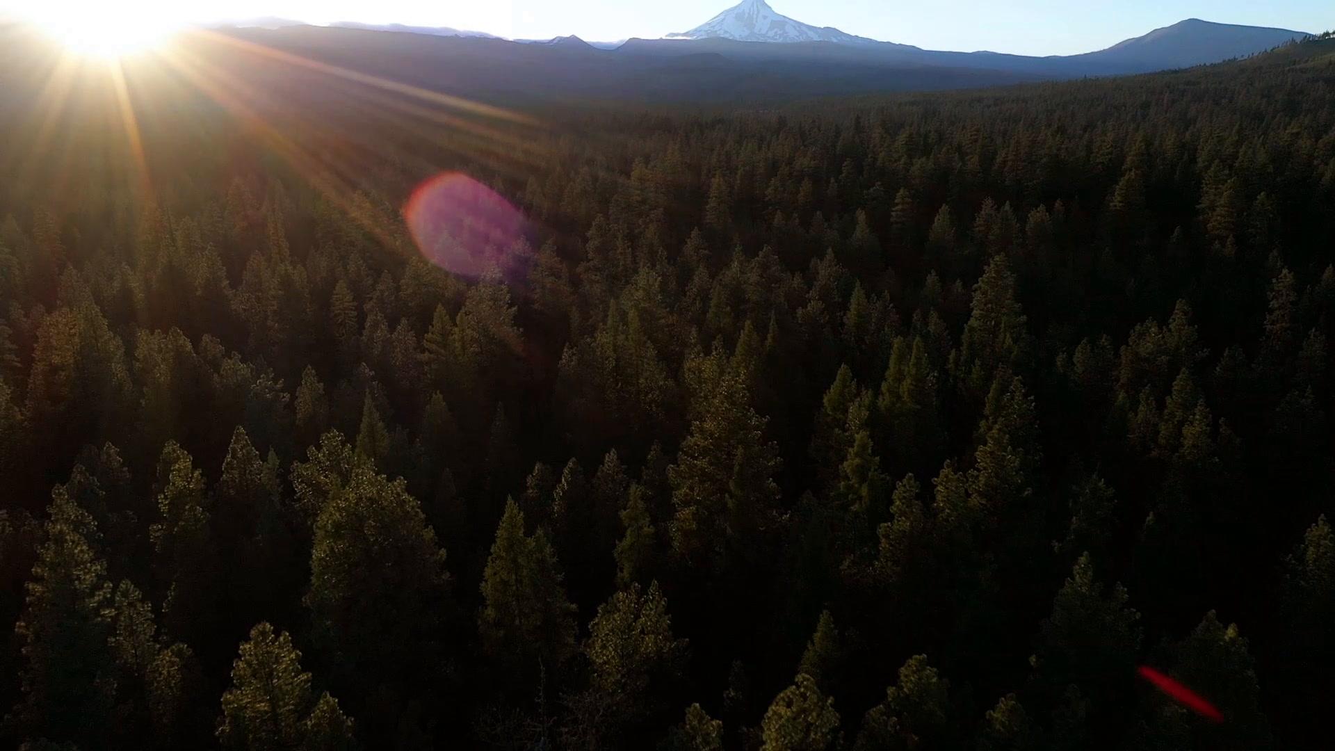 Kathryn + Ryan | Camp Sherman, Oregon | House on Metolius
