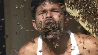 Putter hundrevis av bier i munnen