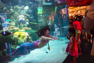 Working as a mermaid in Las Vegas – VIDEO
