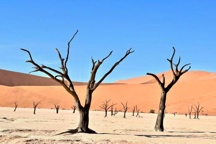 29 julio: el fin de los recursos de la Tierra