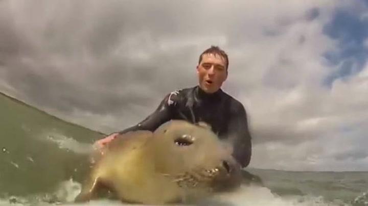 Se hvem som ville være med å surfe