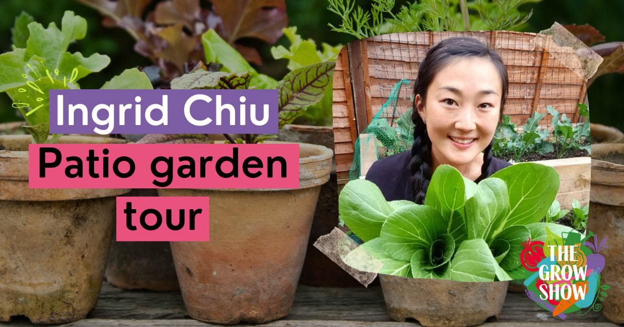 Ingrid Chiu Patio Garden Tour