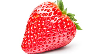 Jeffy eats a strawberry … bow chicka bow wow