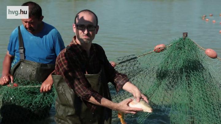 A Nemzet Napszámosa halászni indult