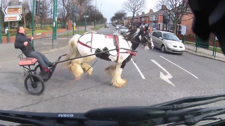 Løpsk hest skapte kaos i trafikken