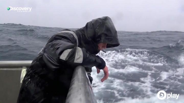 Danske fiskere kaster op under ekstrem søfart
