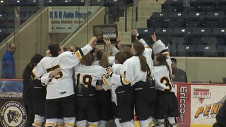 Warroad Wins Section 8A Championship