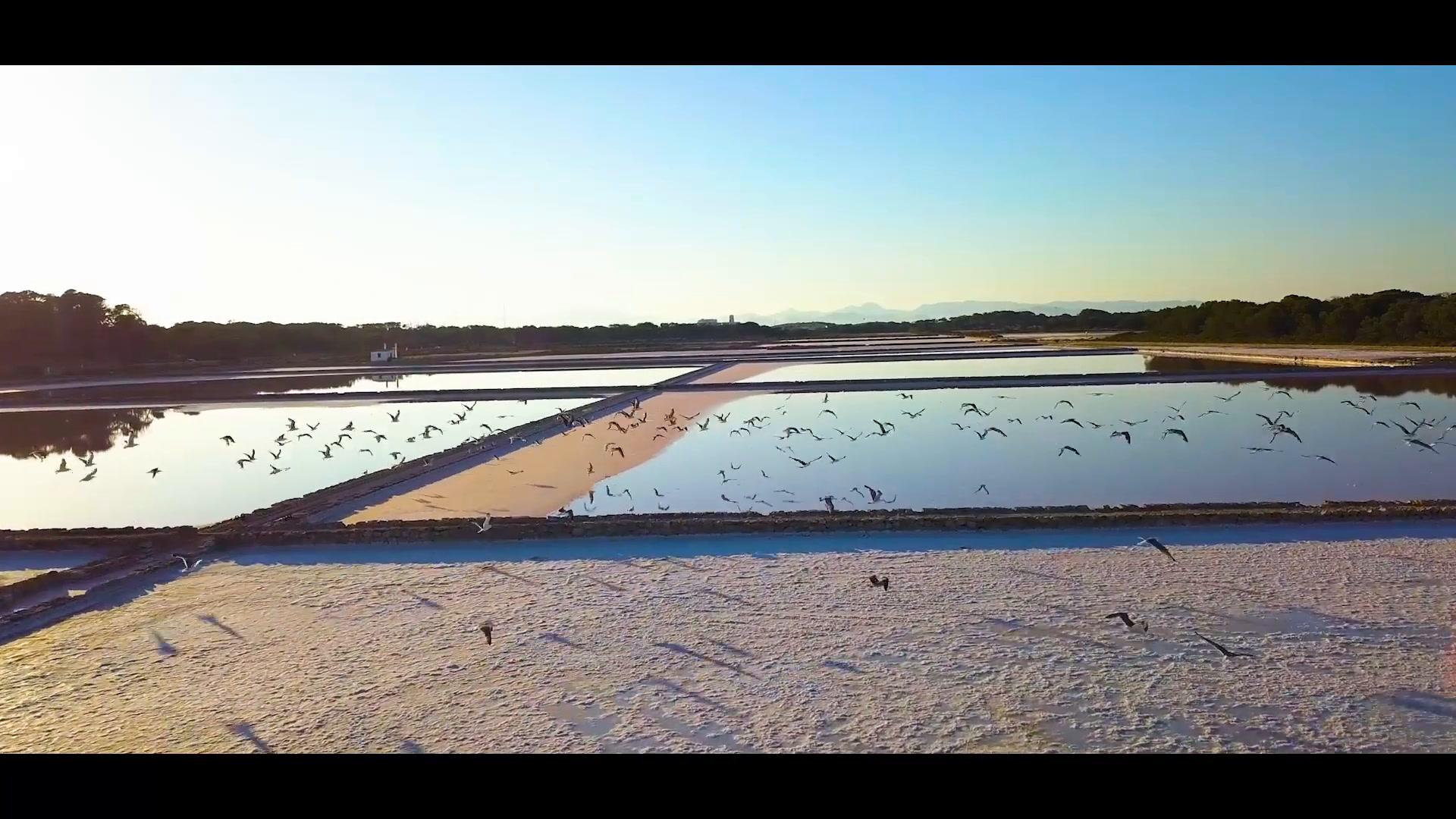 Laura + Maurizio | Formentera del Segura, Spain | Es Moli de Sal