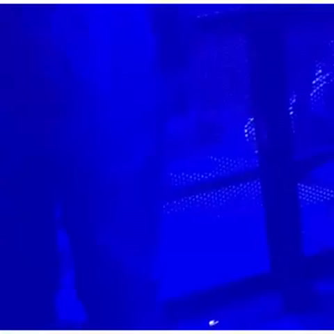 Natalia Oreiro tropezó en un escenario y se dio tremendo golpe