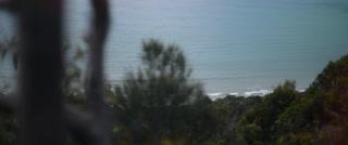 Alessandro + Rebekah | Torquay, Australia | Bellbrae Estate
