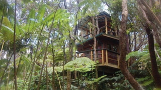 It's Playtime for Grownups at This Amazing Treehouse in Hawaii