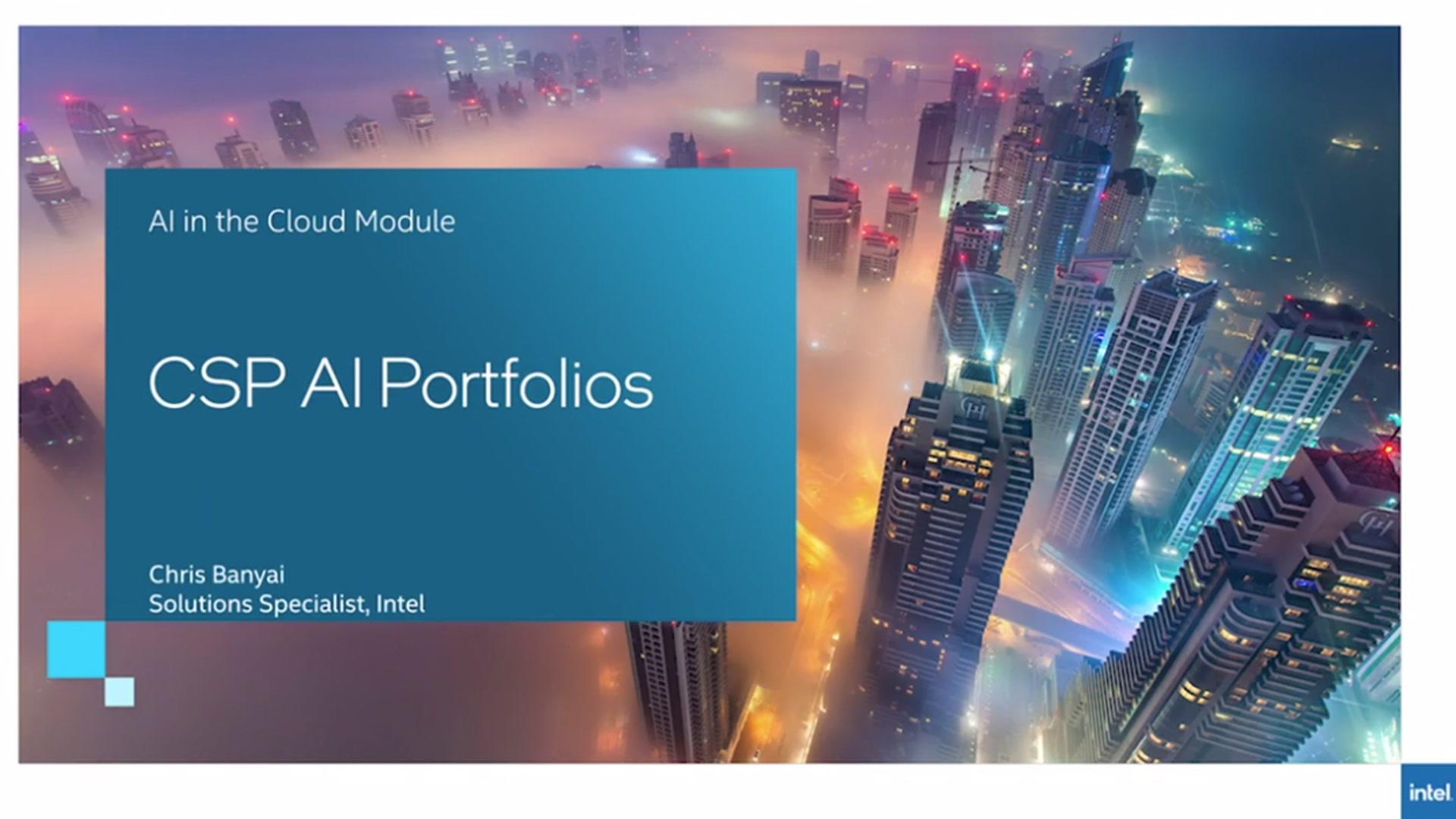 Chapter 1: Cloud Service Provider AI Portfolios
