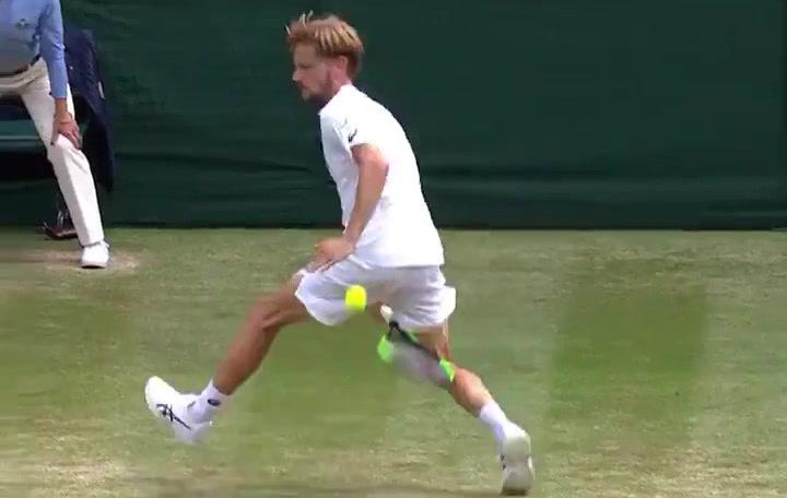 Novak Djokovic y David Goffin firman uno de los puntos de Wimbledon 2019 demostrando habilidad y clase a partes iguales