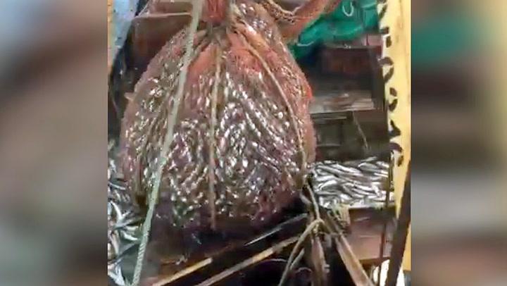Russiske fiskere fikk sint blindpassasjer i nota