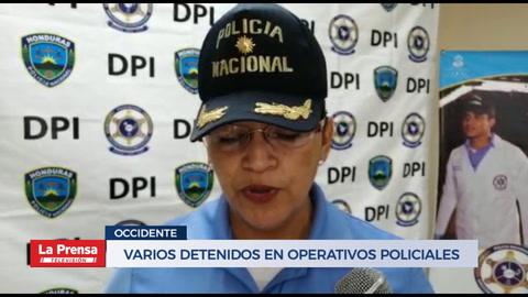 Varios detenidos en operativos policiales